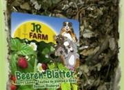JR Farm Ягодоплодни листа за гризачи – 100гр. Артикул No: 08233