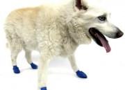 Pawz Medium Blues – каучукова водоустойчива обувка за кучета с дължина на лапата до 7.5 см. 1 брой