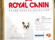 French Bulldog 26 Adult –  Френски Булдози над 12 месеца –  3 kg.