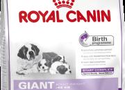 Giant Starterпървите пет етапа от жизнения цикъл: бременност, раждане, кърмене, отбиване и порастване до два месеца -15 kg