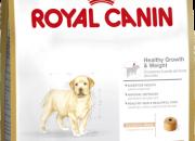 Labrador Retriever 33 Junior – Лабрадор Ретривър до 15 месеца – 3 kg