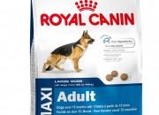 Maxi Adult (тегло между 26 и 44 кг) Над 15 месечна възраст – 4 кг.