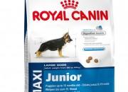 Maxi Junior тегло в зряла възраст от 26 до 44 кг) – До 15 месечна възраст – 4 кг.