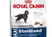 Maxi Sterilised За зрели, кастрирани кучета от едрите породи (от 26 до 44 кг). Над 15 месечна възраст. Склонност към напълняване – 3.5 кг