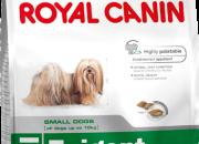 Mini Exigent  – Капризни кучета от дребни породи – 2 кг.