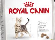 Outdoor 30 – активни и излизащи и навън котки в зряла възраст от 1 до 7 години – 10 кг.