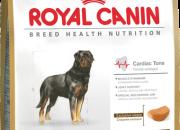 Rottweiler 26 –  Ротвайлери над 18 месеца – 12 kg.