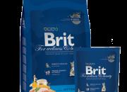 Brit Premium Kitten – 800 gr.