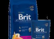 Brit Premium Cat Adult Salmon – 800 gr.