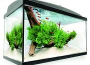 LEDDY 60 Овал оборъдван аквариум – 60х30х30 – 45 литра.