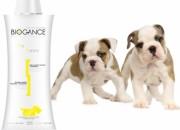 MY PUPPY SHAMPOO  –  шампоан За малки кученца – 250 мл.