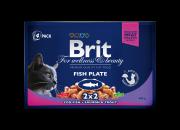 Brit Premium МULTIPACK с риба – 4 пауча x 100 гр.