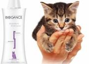 Biogance REPELLENT CAT SHAMPOO – Репелентен шампоан за котки – 250мл.