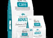 Brit Care Grain-free Adult Salmon & Potato За кучета над 1 г. между 1кг и 25кг  – 1 kg