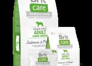 Brit Care Grain-free Adult Large Salmon & Potato – 12 kg
