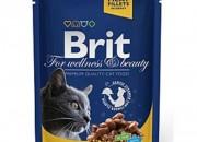 Brit Premium Adult Cat – пауч с пиле и пуйка – 100 гр.
