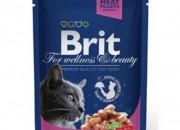 Brit Premium Adult Cat – пауч със сьомга и пъстърва-  100 гр.