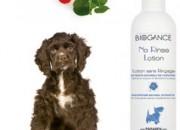 NO RINSE LOTION DOG – Лосион за почистванем – 250мл.