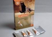 Advocate за котки с тегло до 4 килограма – 3 пипети