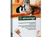 Advantage Спот-он за котки и заици  до 4кг – 4  пипети
